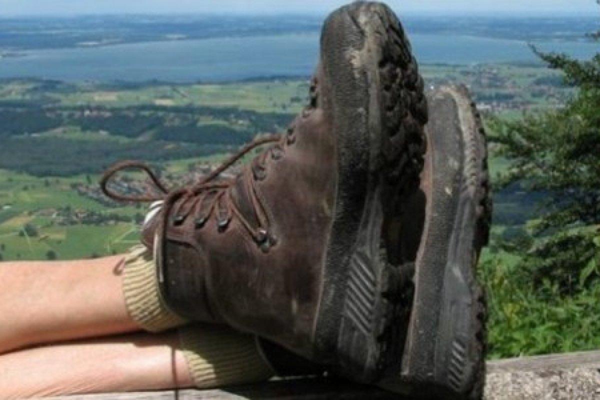 Erfahrungsbericht: Schweizer Wanderforum